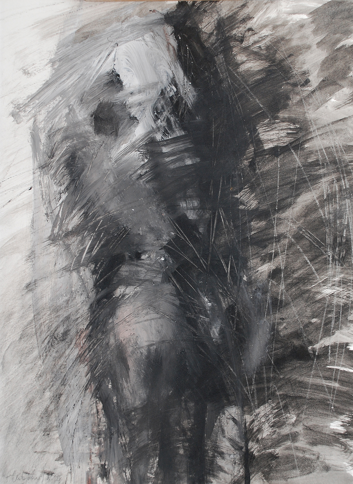2. motiv, 46 x 35 cm, schwarze tusche, acryl/karton